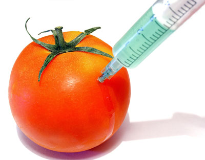 GMO ban gaining strength