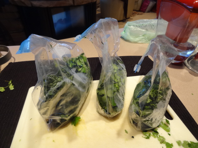Lean Green Detox Smoothie Ingredients